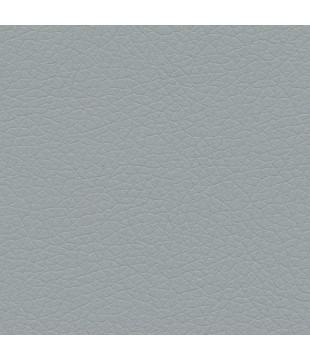 Koženka Just 24 | svetlá sivá
