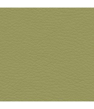 Koženka Just 29 | tmavá zelená