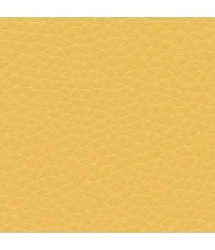 Koženka Dolaro 23 - žltá