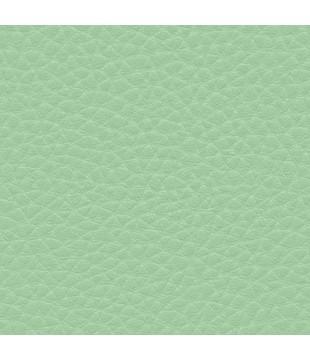 Koženka Dolaro 26 - zelená
