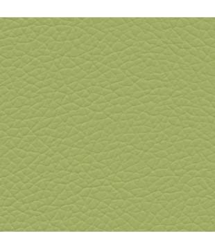 Koženka Gatto 19 | zelená...