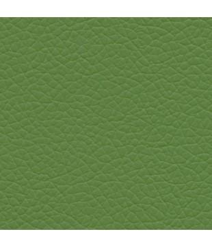 Koženka Gatto 22 | zelená