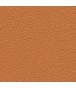 Koženka Gatto 23 | oranžová