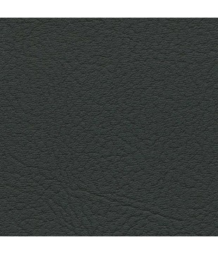 Koženka Vinyl 1 | black