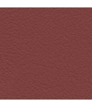 Koženka Vinyl 3 | wine