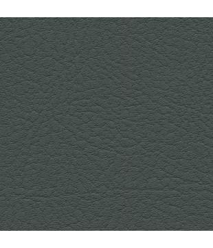 Koženka Vinyl 5 | anthracite