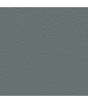 Koženka Vinyl 6 | ash