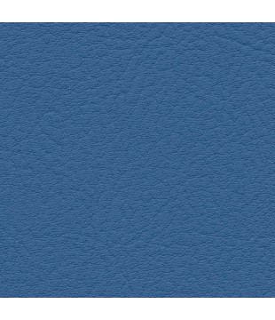 Koženka Vinyl 10 | sky