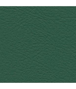 Koženka Vinyl 15 | forest