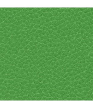 Koženka Dolaro 42 - zelená...